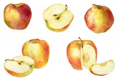 Adesivo A Apple desenho pela aguarela