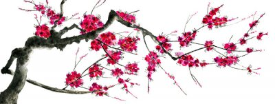 Adesivo A branch of a blossoming sakura. Pink and red stylized flowers of plum mei and  wild cherry . Watercolor and ink illustration of tree in style sumi-e, go-hua,  u-sin. Oriental traditional painting. .