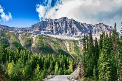 Adesivo A estrada em Yoho National Park, no Canadá