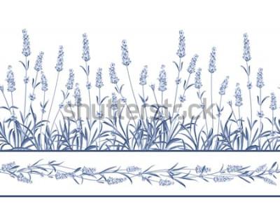 Adesivo A linha de quadro sem emenda de lavanda. O grupo da alfazema floresce em um fundo branco. Ilustração vetorial