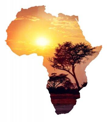 Adesivo Africano, pôr do sol, acácia, mapa, áfrica, conceito