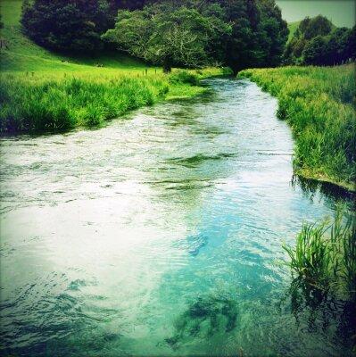 Adesivo Água de nascente