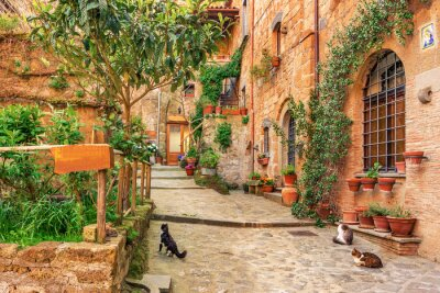 Adesivo Aléia bonita na Cidade Velha Tuscany