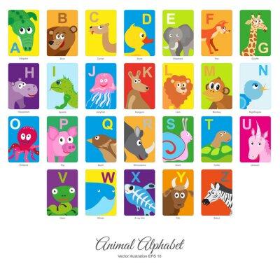 Adesivo Alfabeto animal liso