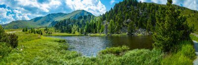 Adesivo Alpine paisagem