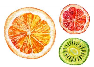 Adesivo Aquarela, jogo, fresco, laranja, kiwi, toranja
