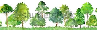 Adesivo aquarela paisagem com árvores de folha caduca, pinho, arbustos e grama, padrão sem emenda, fundo de natureza abstrata, borda da floresta, mão ilustrações desenhadas