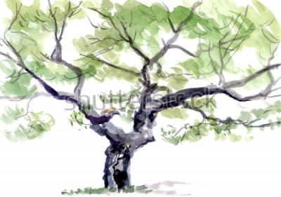 Adesivo árvore, aguarela