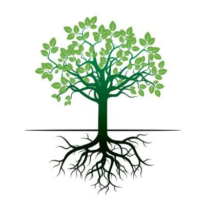 Adesivo Árvore e raizes. Ilustração Do Vetor.