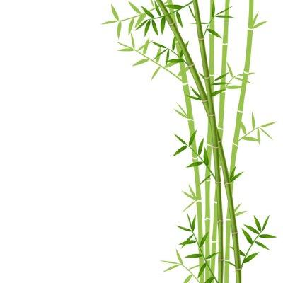 Adesivo Bambu verde no fundo branco, ilustração vetorial