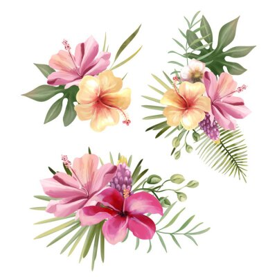 Adesivo Beautiful tropical exotic flowers, floral bouquets, compositions, arrangement, wreaths watercolor illustration isolated on white