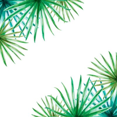 Adesivo Beautiful tropical leaves frame. Palm. Watercolor painting. Exotic plant. Natural print. Sketch drawing. Botanical composition. Greeting card. Painted background. Hand drawn illustration.