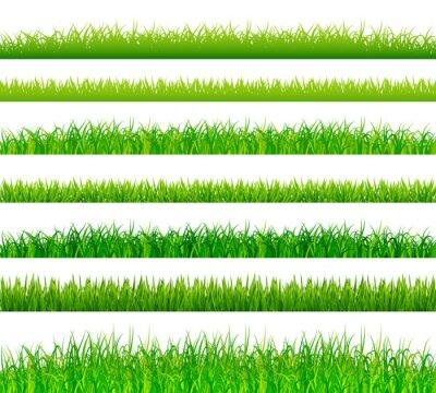 Adesivo beiras da grama verdes ajustados