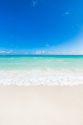 Adesivo Belo mar tropical