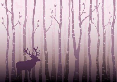 Adesivo Birch, árvore, floresta, vetorial