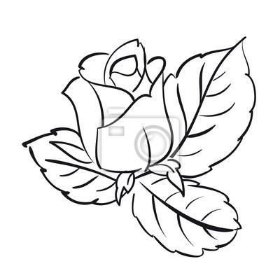 Adesivo Blooming rosas