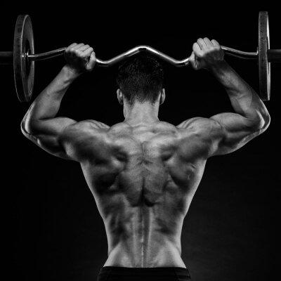 Adesivo Bodybuilder, mostrando, seu, costas