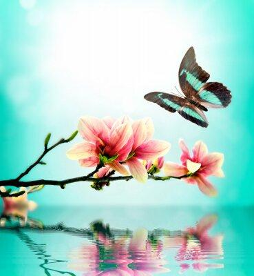 Adesivo Borboleta e flor de magnólia
