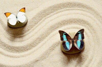 Adesivo Borboleta na areia