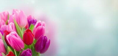 Adesivo buquê de flores tulipa rosa e roxo
