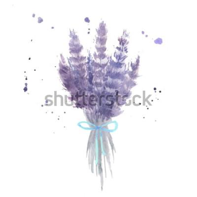 Adesivo Buquê de lavanda em aquarela. Esboce flores de lavanda com fita azul e aquarela espirra. Ilustração vetorial isolado
