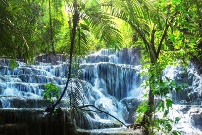 Adesivo Cachoeira no México