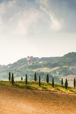 Adesivo Campos em Tuscany