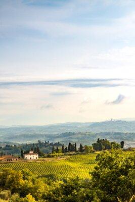 Adesivo Campos na Toscana