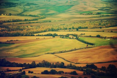 Adesivo Campos ondulados em Toscânia no por do sol, Italy. Fundo sazonal natural da mola do vintage exterior.