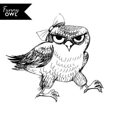 Adesivo Caráter engraçado da coruja