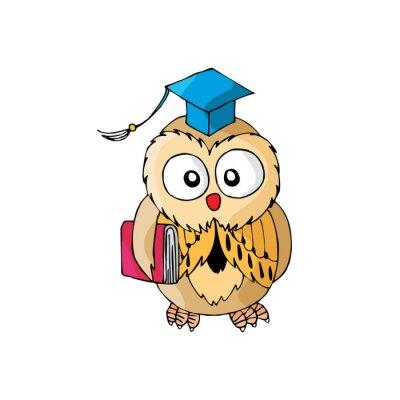 Adesivo Cartoon Owl é inteligente