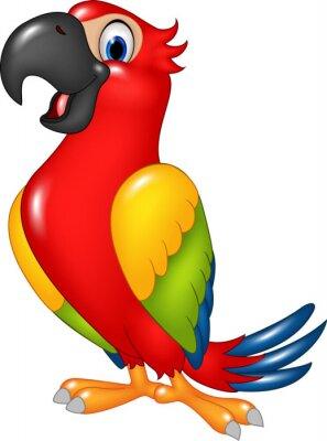 Adesivo Cartoon papagaio engraçado isolado no fundo branco