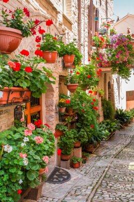 Adesivo Cheio, flor, varanda, pequeno, cidade, itália