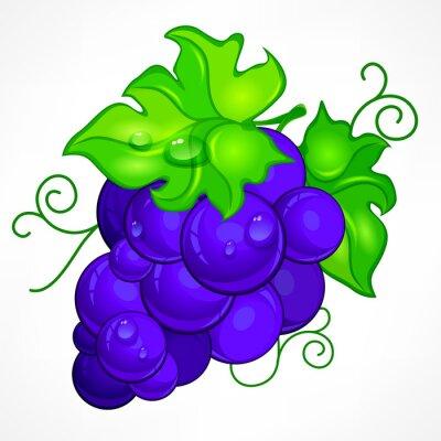 Adesivo Cluster, azul, uvas, verde, folha, gota, água, branca,