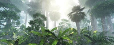 Adesivo coconut jungle in the morning in the fog, forest in the haze. 3d rendering.
