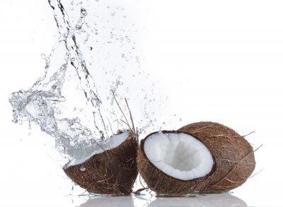 Adesivo Coconuts com respingos de água