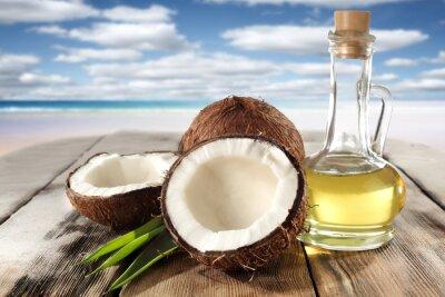 Adesivo cocos