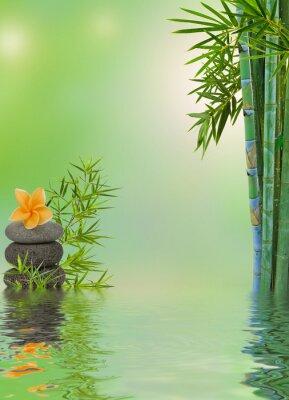 Adesivo Composição aquatique relaxamento massagem zen
