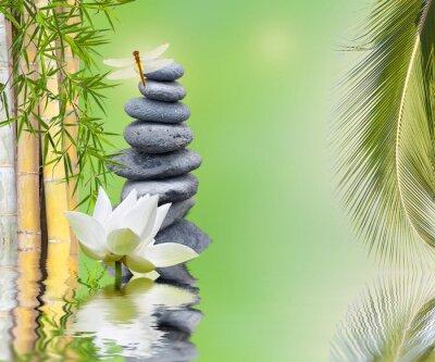 Adesivo composição bambou palmier galets zen aquatique