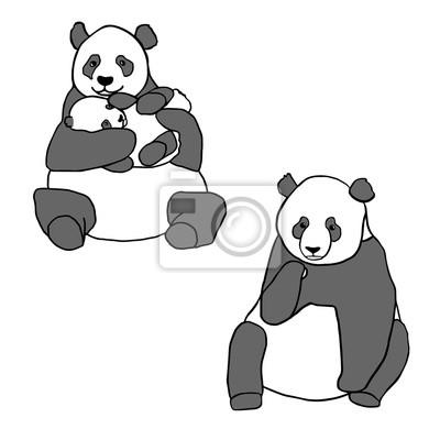 Adesivo Conjunto de dois pandas bonitos e filhote. Ilustrações desenhadas mão do vetor isoladas no branco. Panda bonito da mãe com bebê pequeno e panda de assento