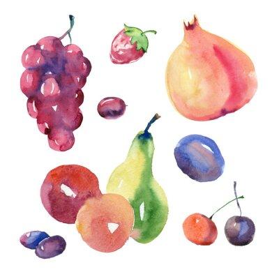 Adesivo Conjunto de frutas aquarela