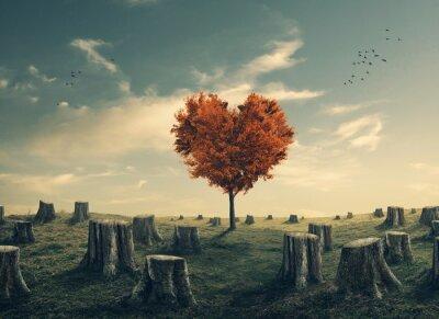 Adesivo Coração, dado forma, árvore, desmatado, floresta