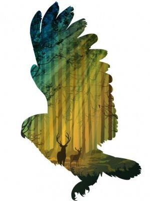 Adesivo coruja