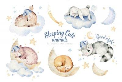 Adesivo Cute dreaming cartoon animal deer, bear hand drawn watercolor illustration. Sleeping rabbit charecher kids nursery wear fashion design, baby cartoon and fox