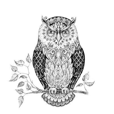 Adesivo Desenho, coruja, bonito, padrões