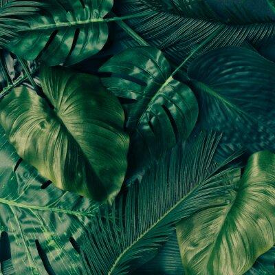 Adesivo Desenho criativo das folhas verdes tropicais. Conceito de primavera natural. Leito plano.