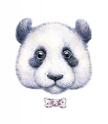 Adesivo Desenho da cor de água de um panda no fundo branco