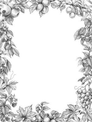 Adesivo Desenho de lápis de quadro Vertical de frutas