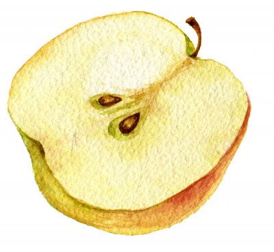 Adesivo Desenho maçã metade pela aguarela