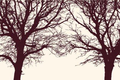 Adesivo Duas árvores